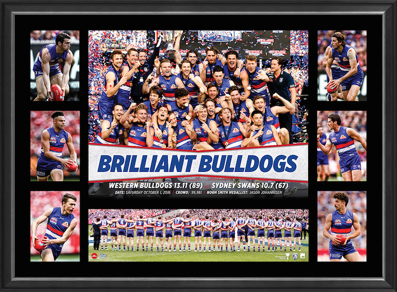 Western Bulldogs 2016 AFL Premiers Super Frame - FREE DELIVERY