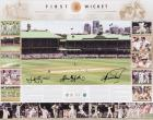 """The First Wicket"" - Shane Waugh, Glenn McGrath, Justin Langer Hand Signed Retirement Tribute Including Piece of Test Stump, Framed"