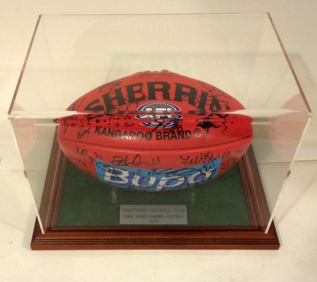 Hawthorn 2014 AFL Premiers Squad Signed Ball, Cased
